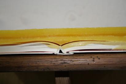 2013-Buch-3.jpg